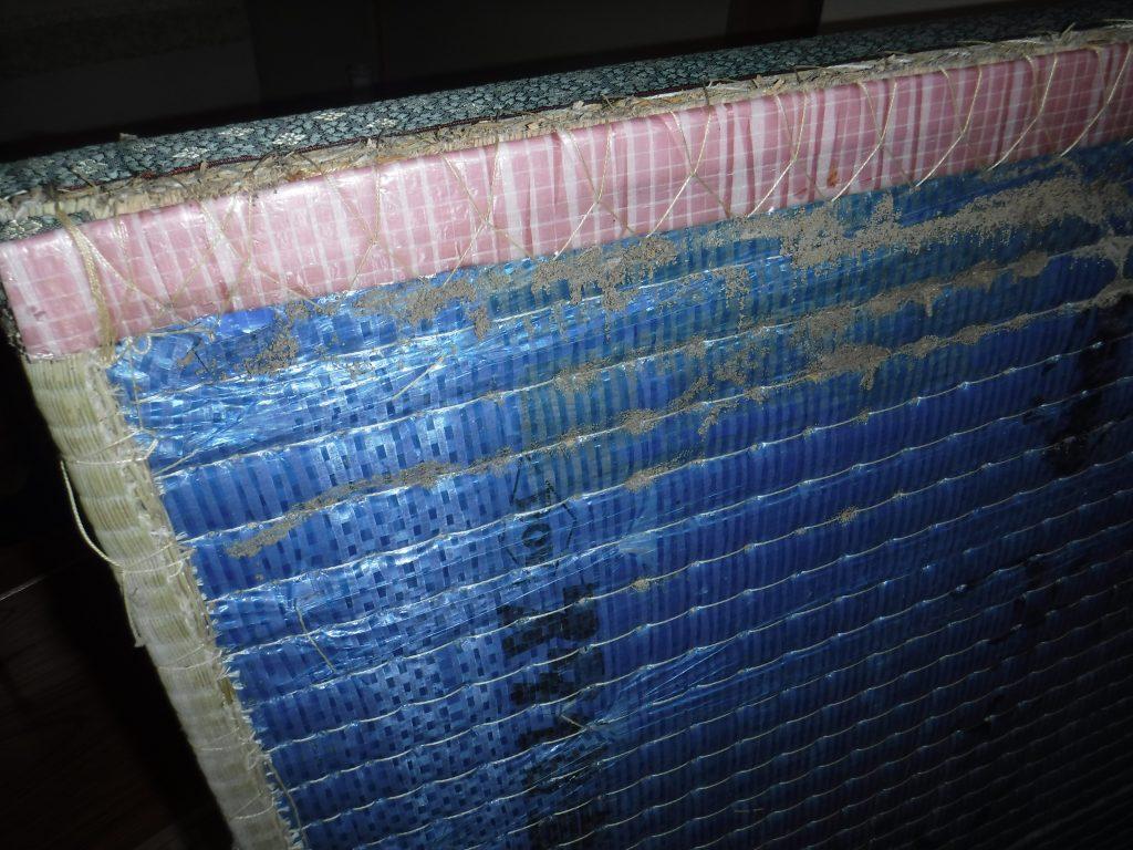 福岡県ヤマトシロアリの床下調査