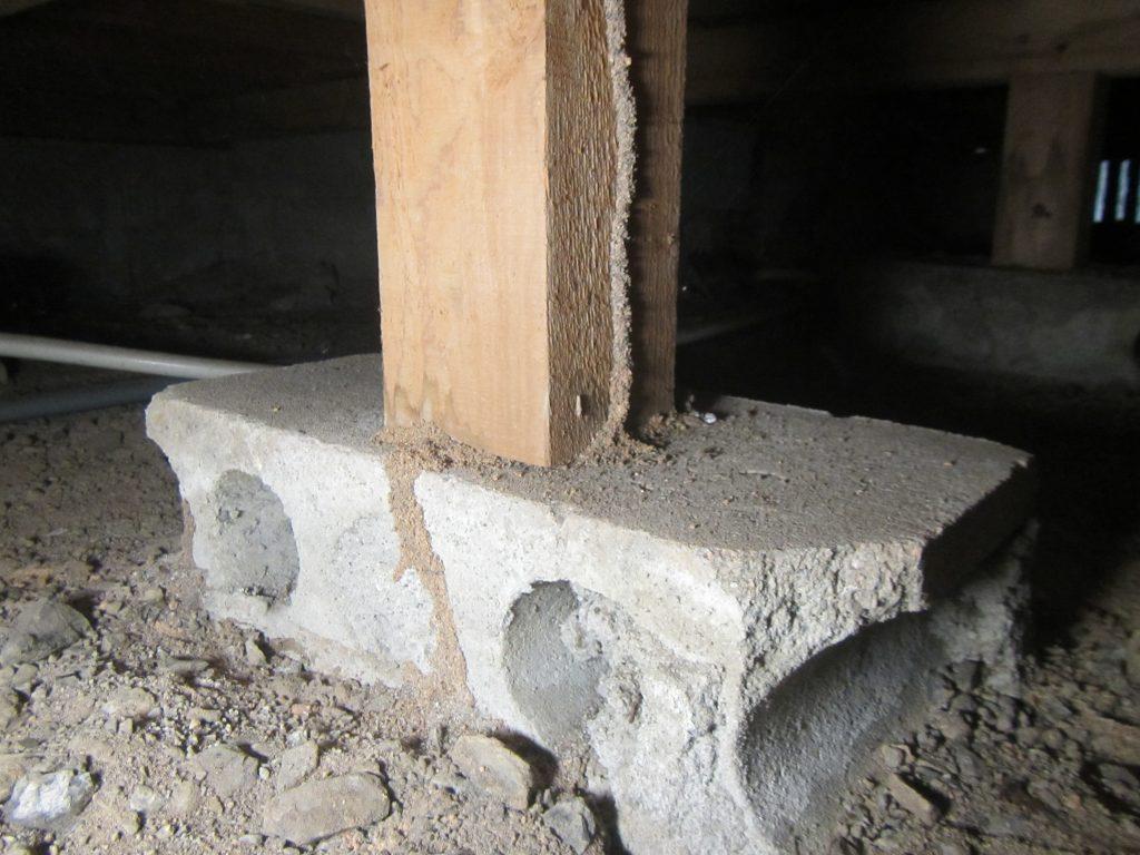 飯塚市中古住宅購入時のシロアリ調査3