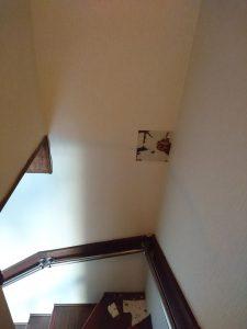 北九州市戸畑区の階段の壁のシロアリ被害①