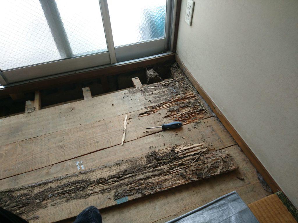 RC構造(鉄筋コンクリート造り)でもシロアリは生息してます。Vol2| 北九州市八幡西区