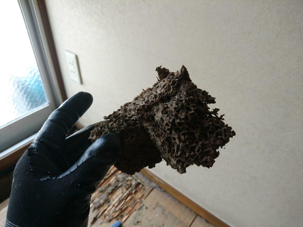北九州市八幡西区RC造シロアリ被害
