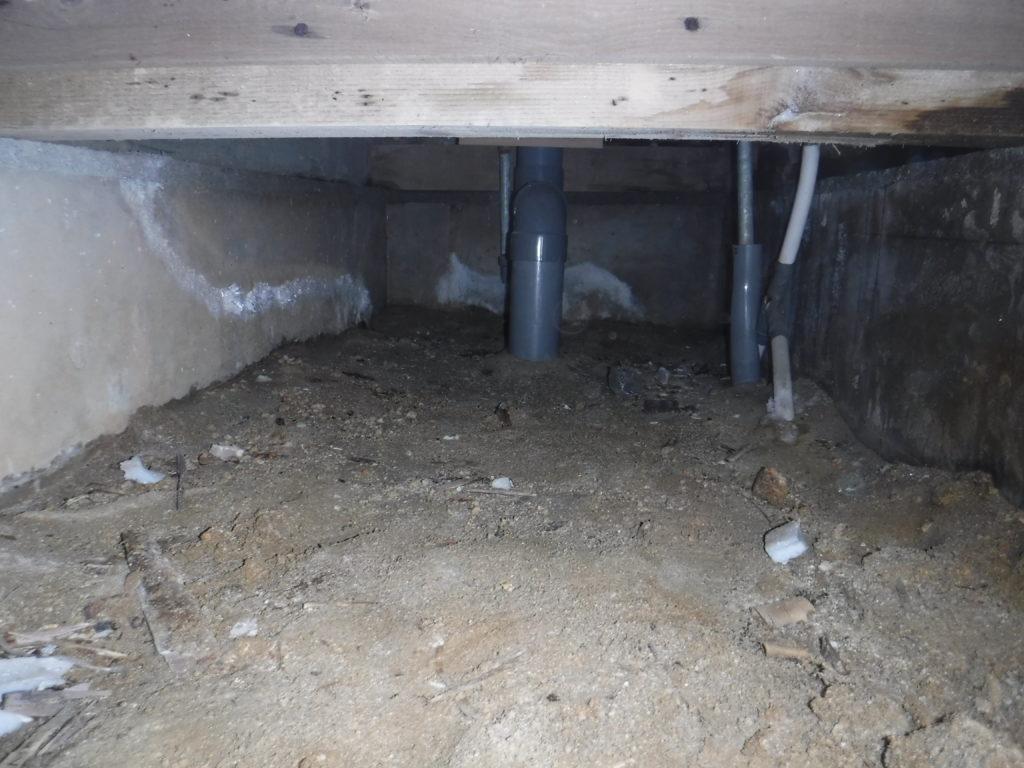 宗像市シロアリ調査で建物の被害が分かる01