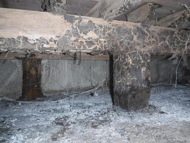 木造アパートのシロアリ床下調査02