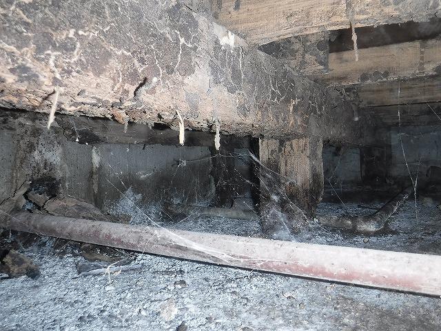 木造アパートのシロアリ床下調査04