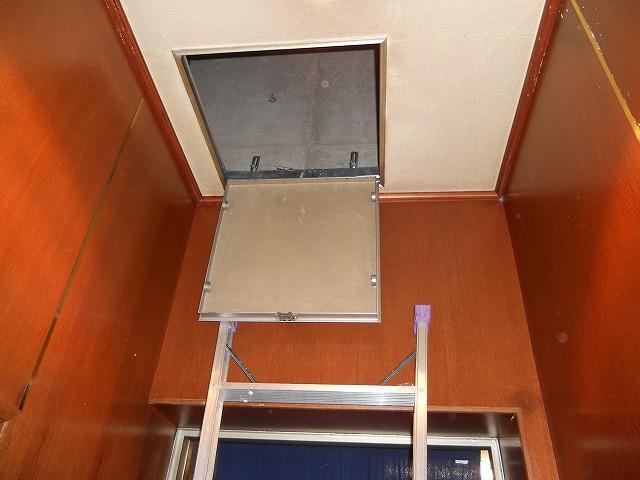 福岡市 | 飲食店天井裏のシロアリ調査01