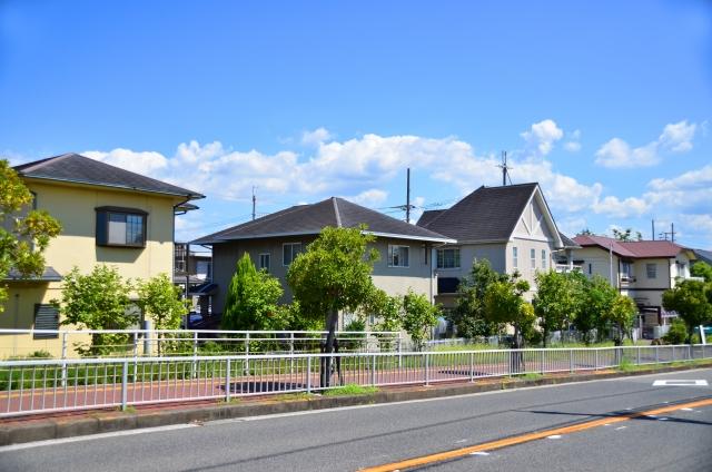 福岡地方に多いシロアリ被害の特徴と予防のポイント