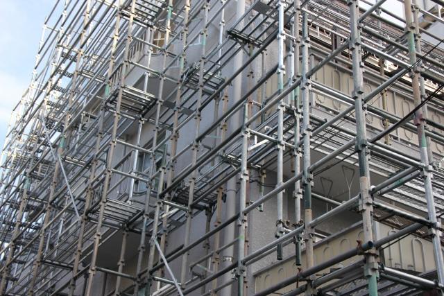 RC構造(鉄筋コンクリート造り)でもシロアリは生息してます。vol,1