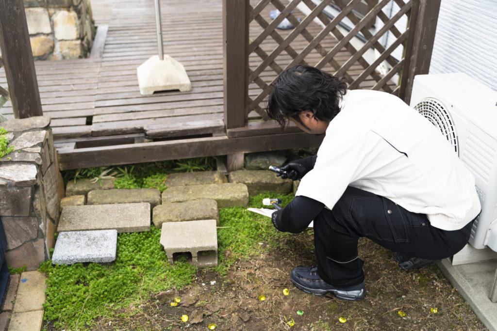 自宅の敷地内に発生するシロアリ被害の特徴と対処方法
